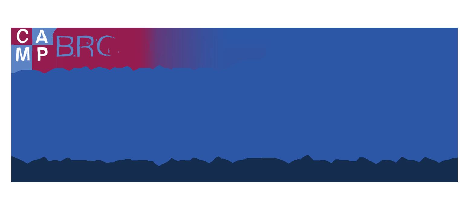 Shining Stars NYC