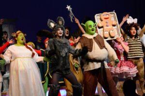 Shrek The Musical Custome